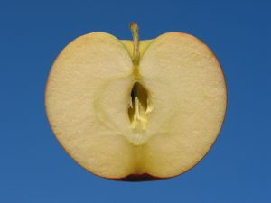 An apple turning brown is an example of oxidation
