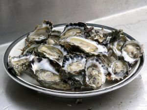 Oysters are Extremely high in Zinc