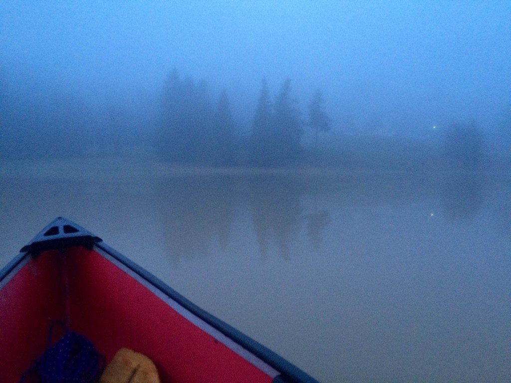 Misty morning canoe ride in the lower south pasture