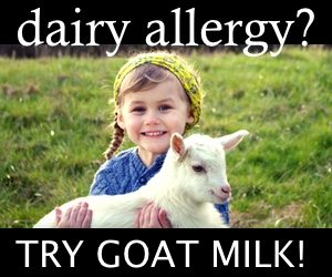 Dairy Allergy? Try Goat Milk!
