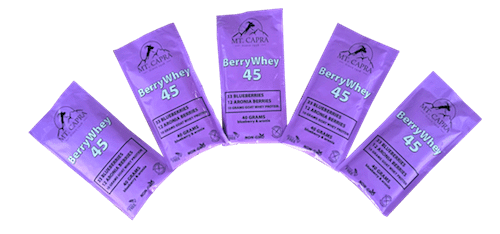 berry-whey-45-protein-pacific-northwest-goat-milk-blueberries