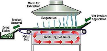 refractance window drying technology mt capra
