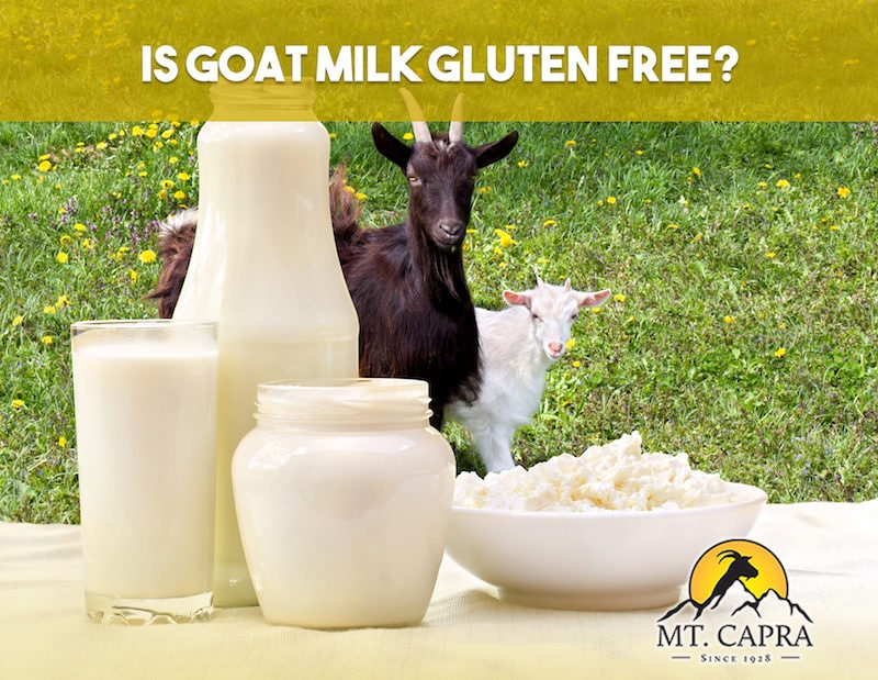 gluten free goat milk and goat