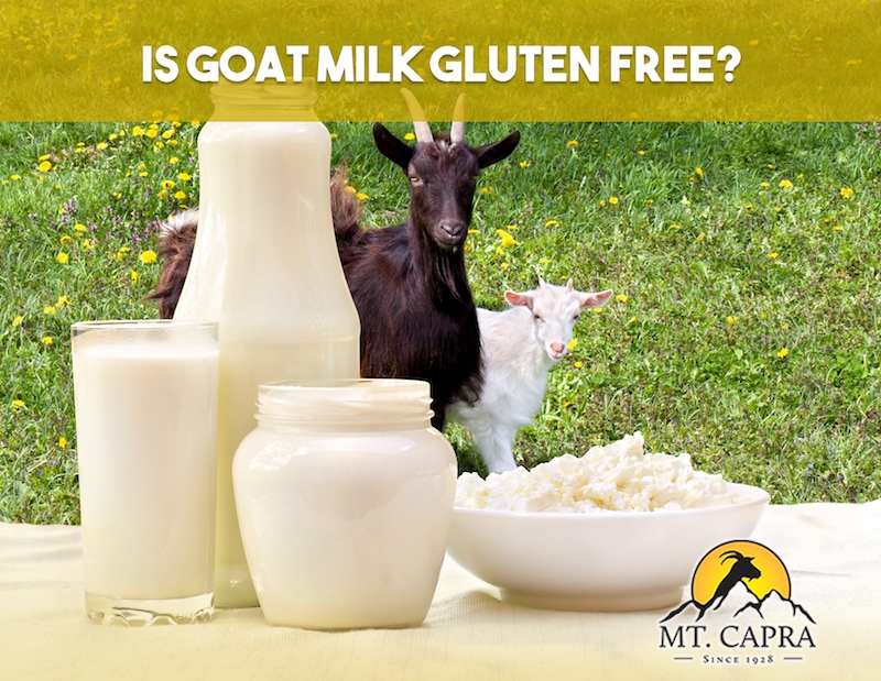 gluten free goat milk and goat
